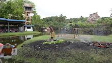 Quatchi in Fiji