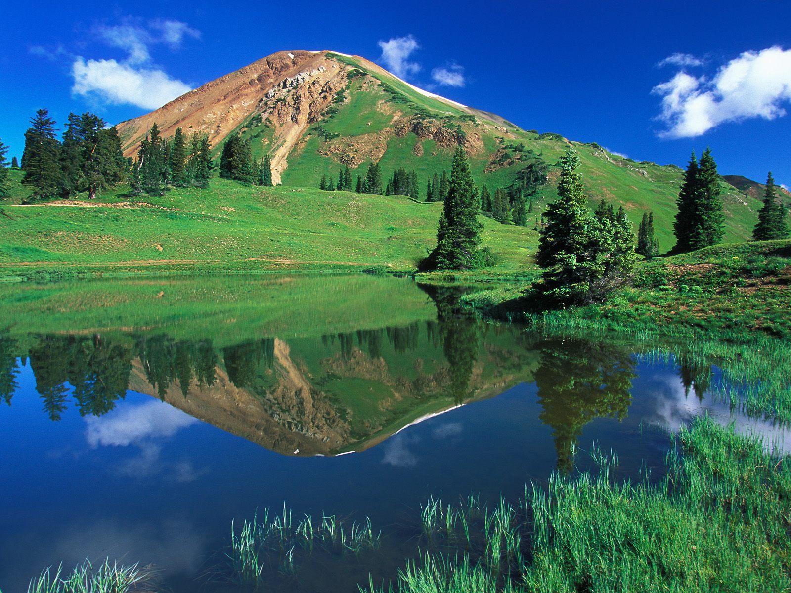mountain and the greenary - photo #35