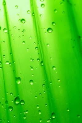 iPhone 4 Green Water Drops Wallpaper