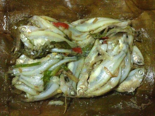 หมกปลาซิว