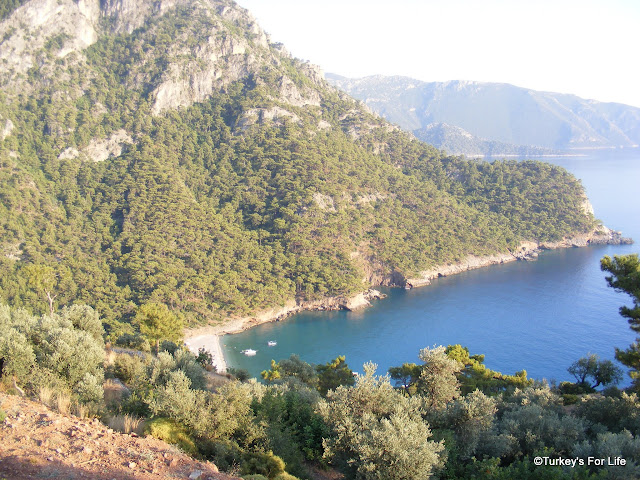 Kabak Bay From Olive Garden