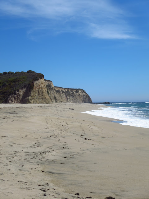 Scott Creek Beach