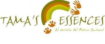 ¡ Clicka y entra un mundo de terapias para animales!