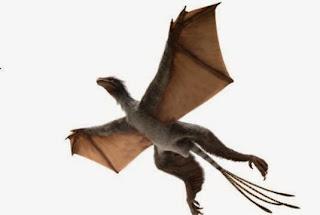 Dinosaurus Burung Kelelawar Aneh Ditemukan