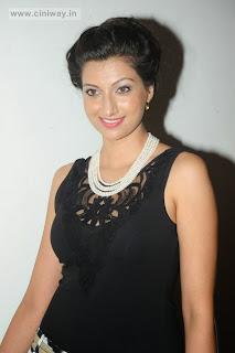 Hamsa-Nandini
