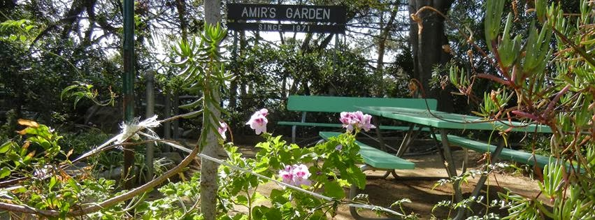 la commons hosting historic amirs garden tour this sunday - Amirs Garden