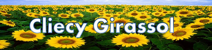 Blog da Cliecy - Tudo o que você precisa saber!!!