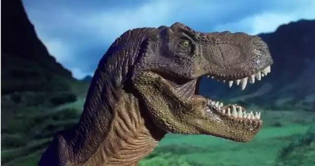 Ανακαλύφθηκαν απολιθωμένα αποτυπώματα δεινοσαύρων 100 εκατομμυρίων ετών στην Kίνα
