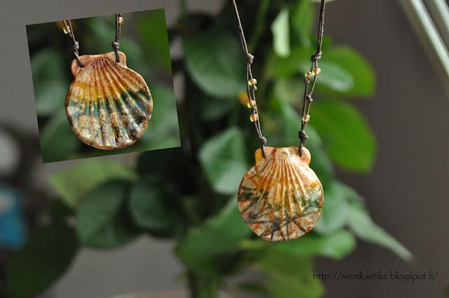 rainbow shell sateenkaari simpukka