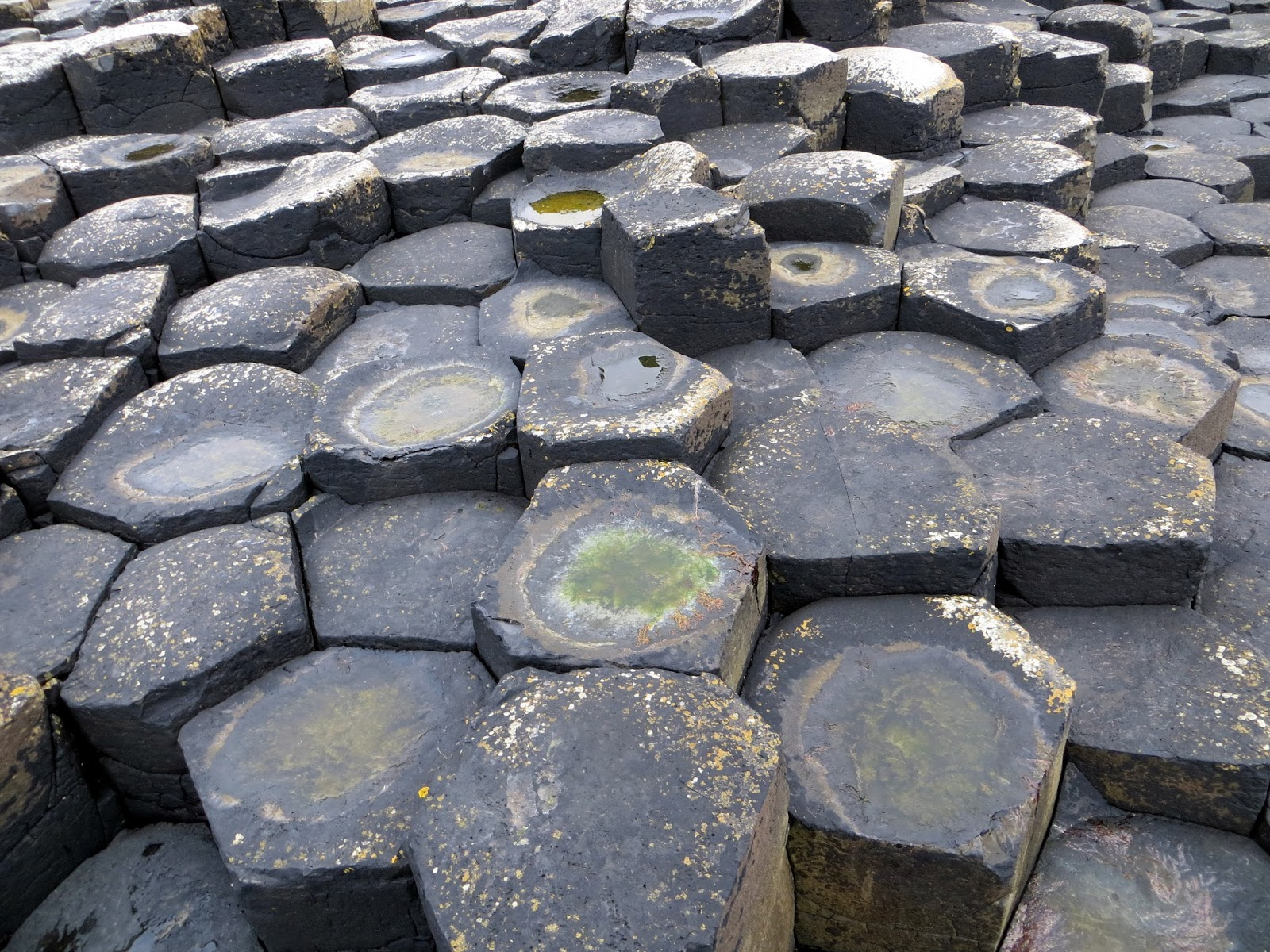 Giant's Causeway, Ireland, Northern Ireland, Basalt columns, volcanic rock, Antrim, causeway coast, amazing, places to see, bucket list, Ulster,