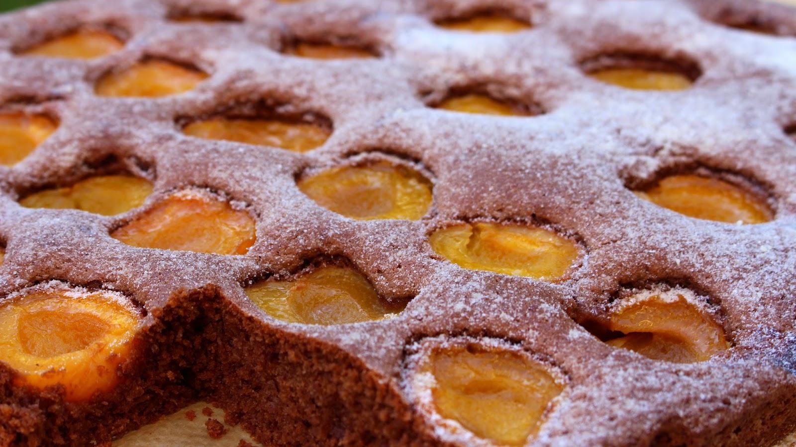 Schoko-Aprikosen-Blechkuchen