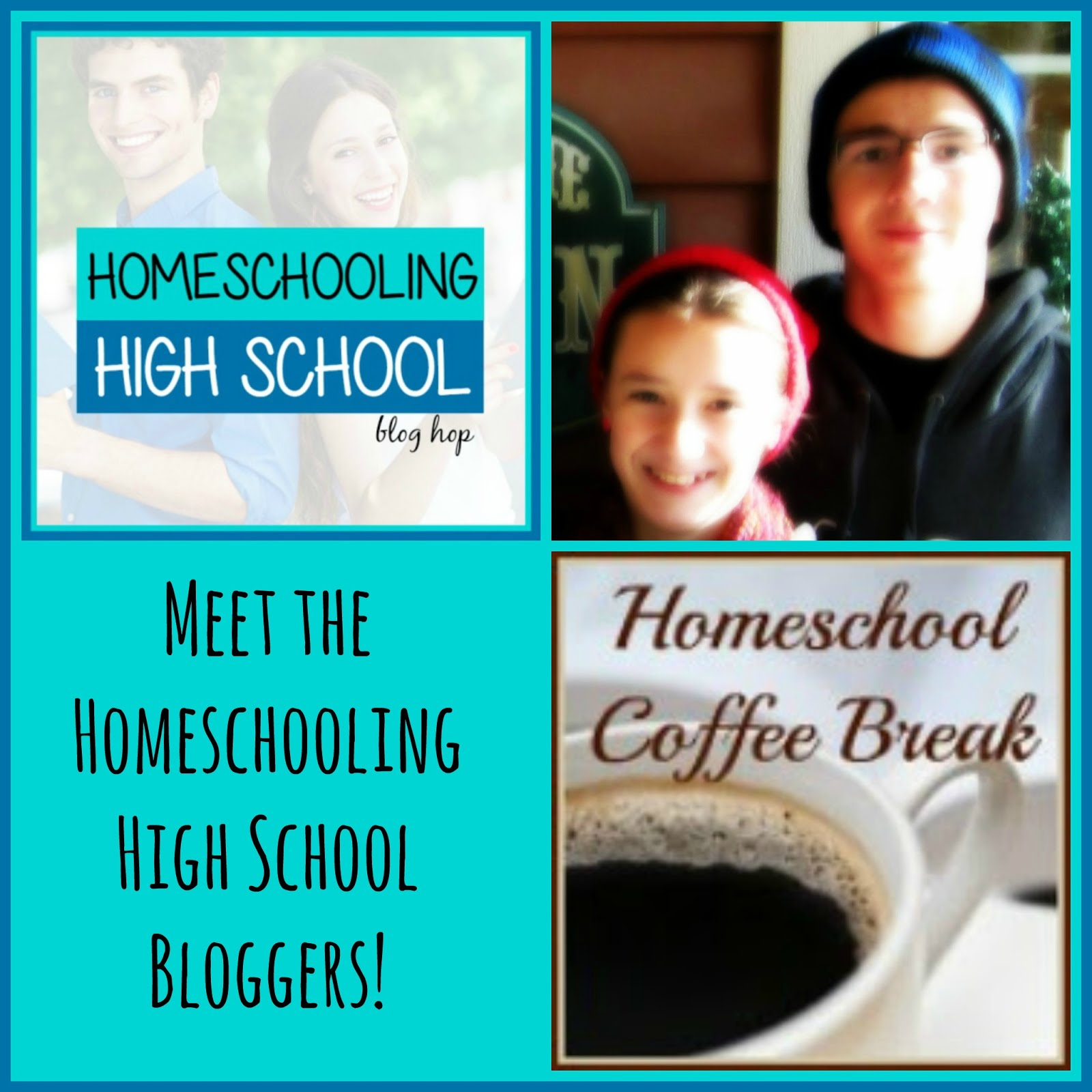 Homeschooling High School Blog Hop 2015