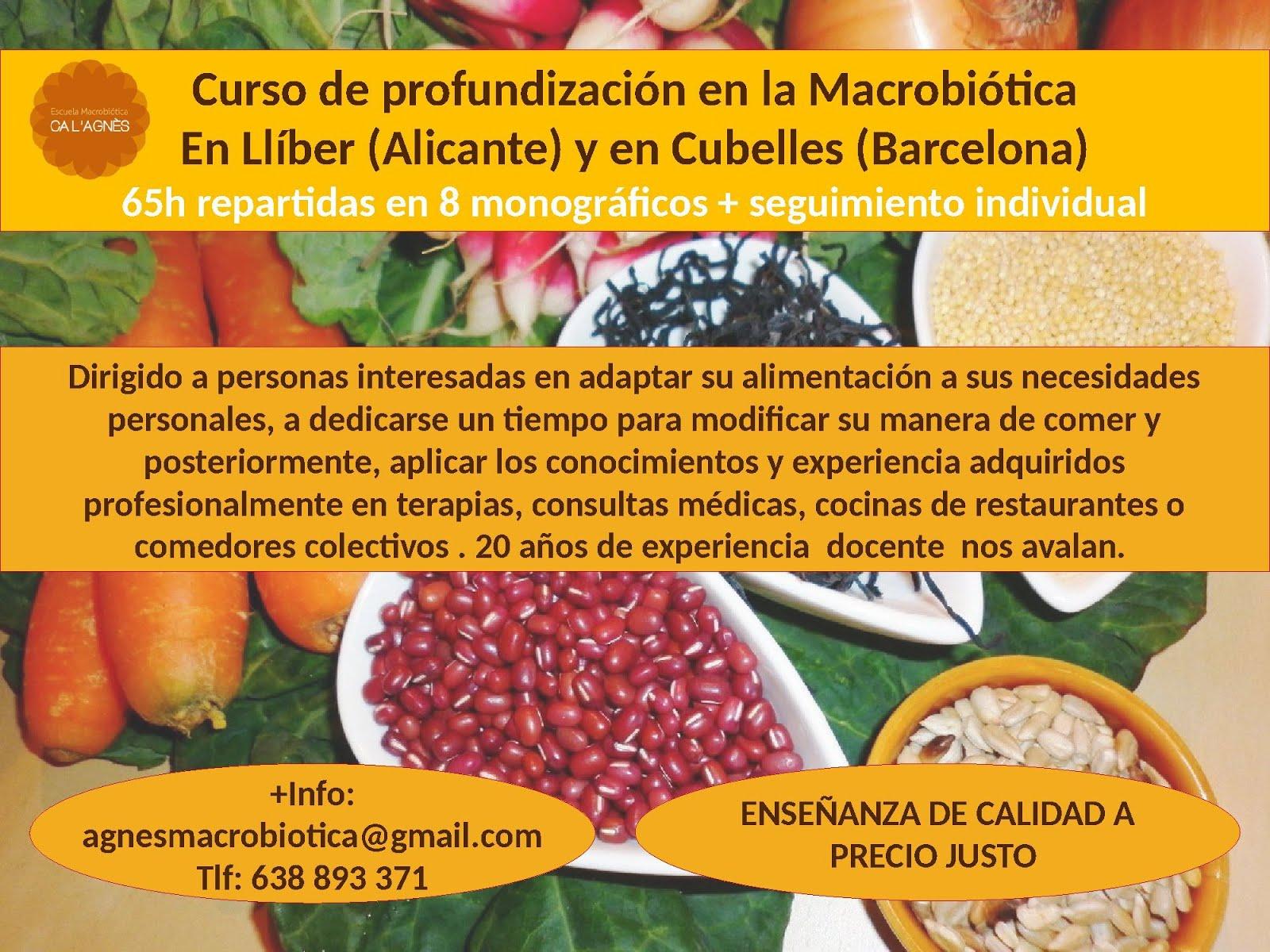 CURSO DE PROFUNDIZACIÓN EN LA MACROBIÓTICA 2017 - 2018 en LLíber (Alicante) y en Cubelles (Barcelon