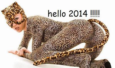 llegó 2014