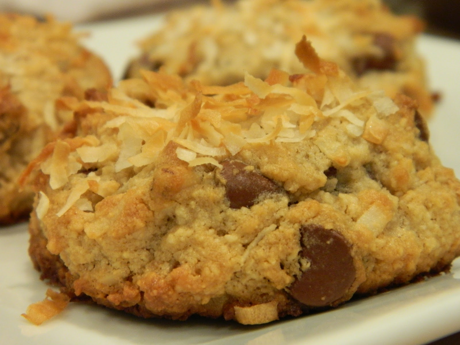 Primal Bites: Grain Free Chocolate Chip Walnut Cookies with Coconut