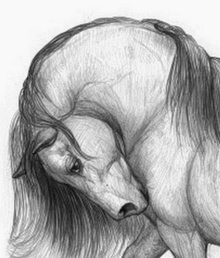 Mejores Dibujos a Lapiz Dibujos de Las Mejores