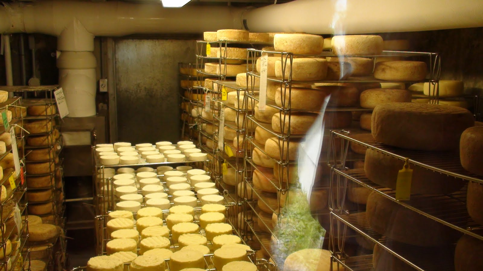 Cheese storage