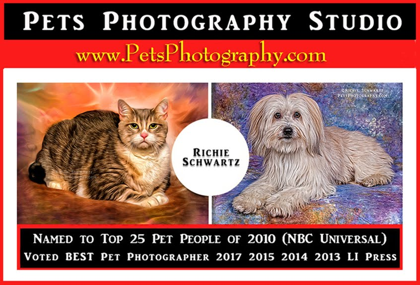 Celebrity Pet Photographer Richie Schwartz