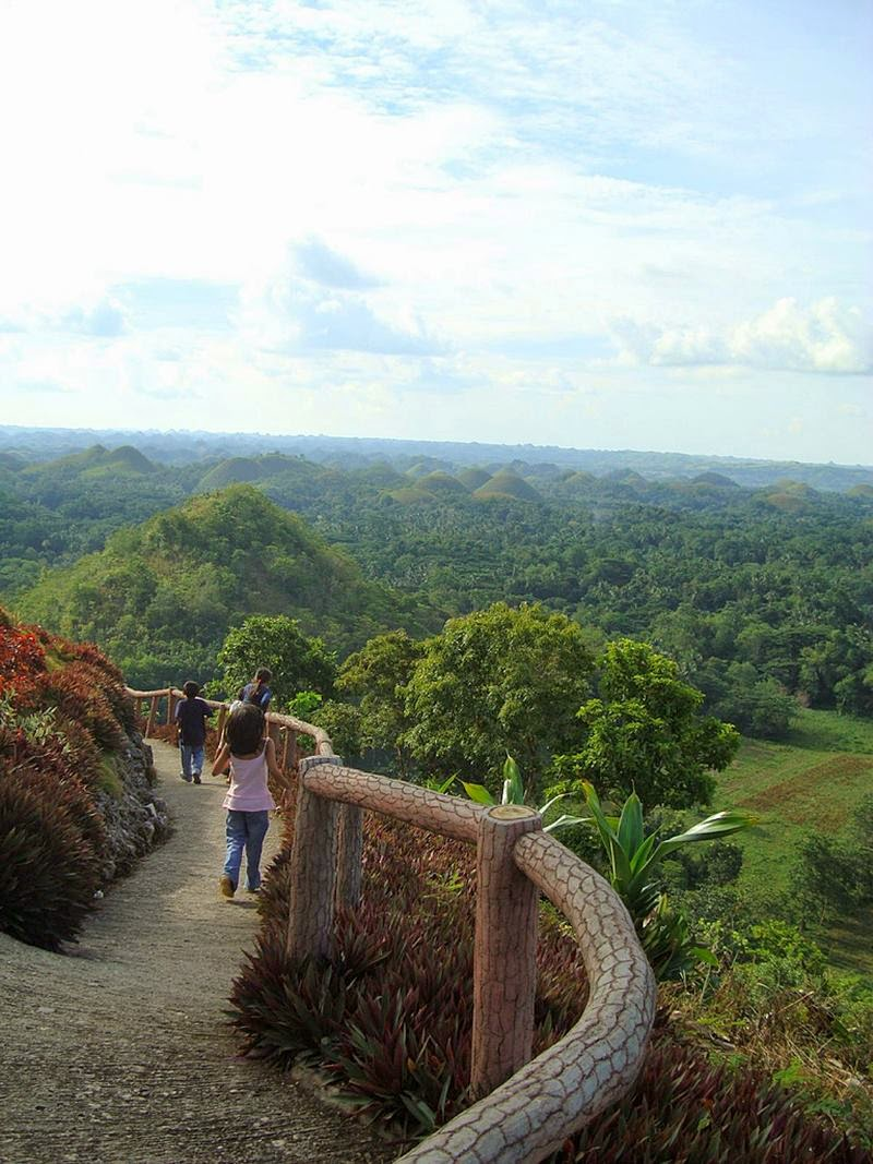 Chocolate Hills - The most famous tourist attraction on the island of Bohol, Philippines.