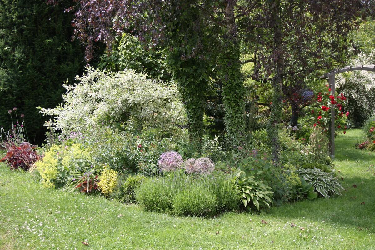 Petit tour de jardin le blog de mon doubs jardin - Petit jardin culinary arts tours ...