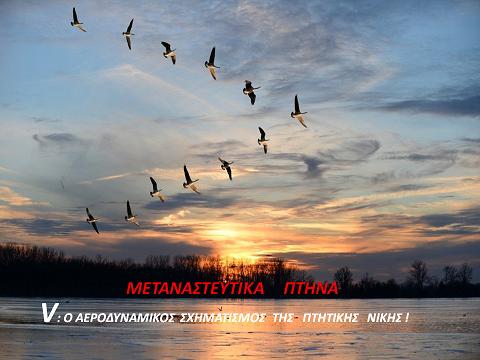 """""""Μεταναστευτικά πτηνά, V: ο αεροδυναμικός σχηματισμός της πτητικής νίκης"""" - Άγγελος Αντωνέλλης"""