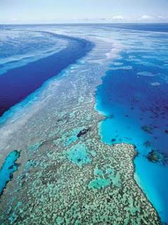 Great Barrier Reef atau karang penghalang besar