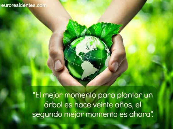Blog de Mis Frases: Frases para Cuidar el Medio Ambiente