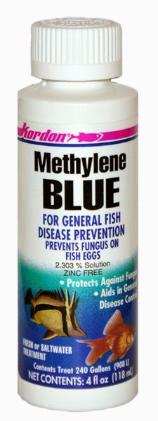 Methylene blue by kordon for fish baths fungal parasite for Methylene blue for fish