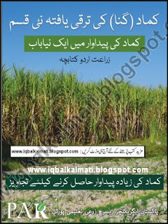 Sugarcane New Varieties And Types PDF Urdu Booklet