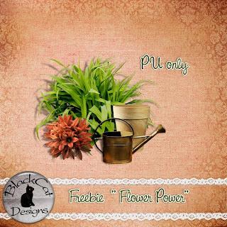 http://1.bp.blogspot.com/-R0PUP7oo8HM/TWytY-G7izI/AAAAAAAAENs/-OyoxdJkbq0/s320/FreebiePU_FlowerPower_preview.jpg
