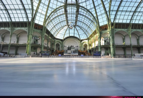 la patinoire du grand palais. Black Bedroom Furniture Sets. Home Design Ideas