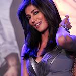 Sultry Beauty   Chitrangda Singh