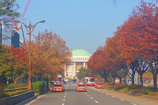 National Assembly, autumn foliage and blue sky | www.meheartseoul.blogspot.sg