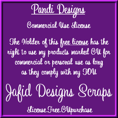 Pandi Designs CU License