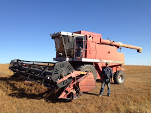 2012 - Harvest