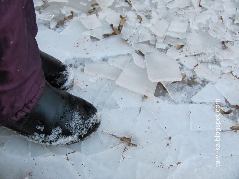 льдины на луже