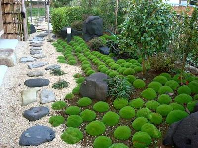 foto jardin pequeño japones