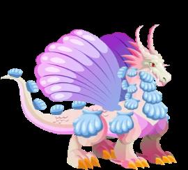 imagen del dragon concha adulto