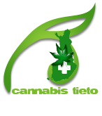 Cannabis blogi