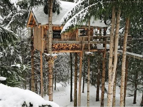 A log cabin like tree house tiny house in for Building a small cabin in the woods
