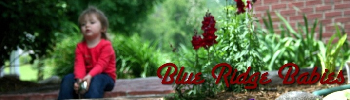 Blue Ridge Baby