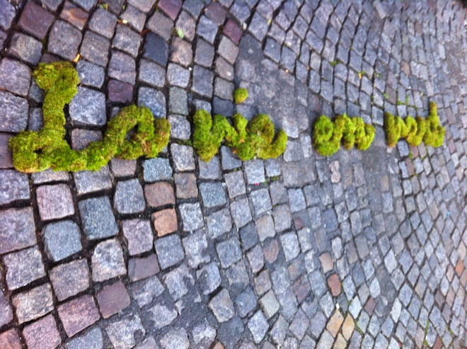 "green Tag pour ""Borntorun"""
