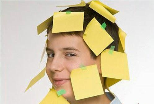Cải thiện trí nhớ bằng hạt methi