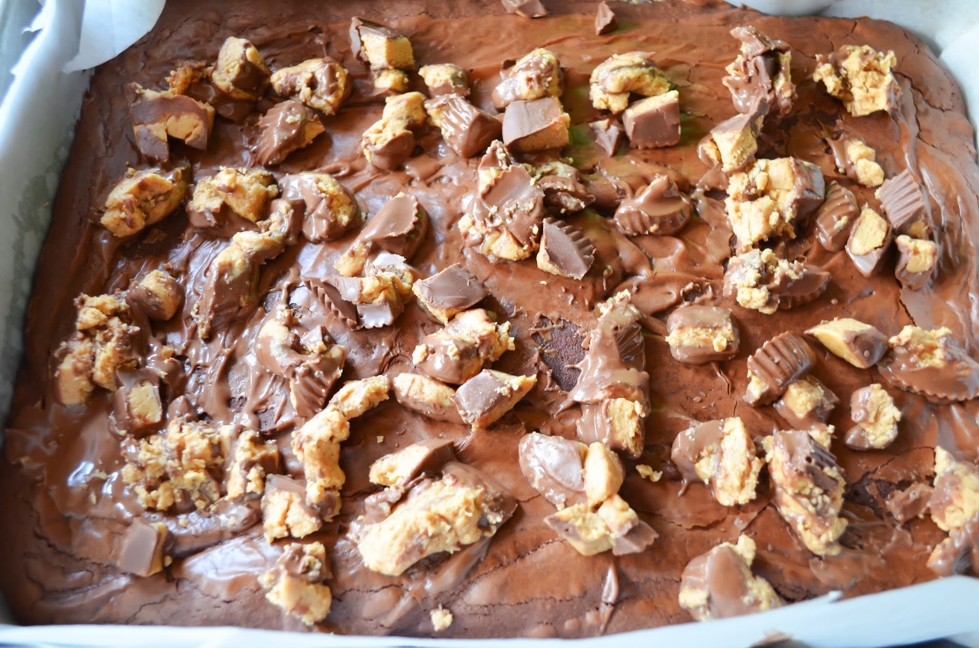 Peanut-Butter-Cup-Crunch-Brownies-Peanut-Butter-Cup.jpg