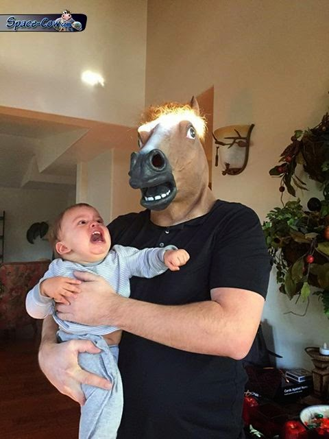 funny horse mask picture