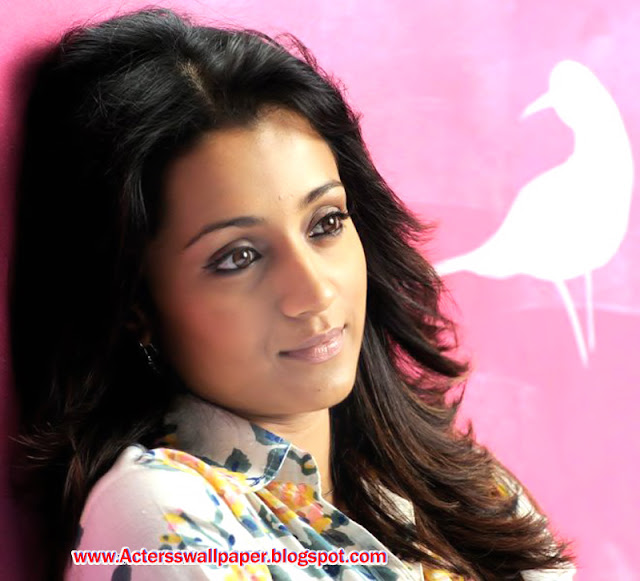 Trisha Hot Sexy 2013 And 2014 wallpapers
