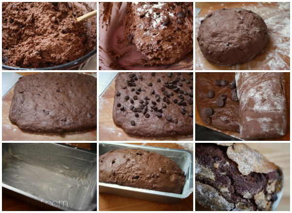 Chocolate Chocolate Chip Bread (no-knead) | www.girlichef.com