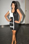 Pavani Reddy Glamorosu Photo shoot-thumbnail-1