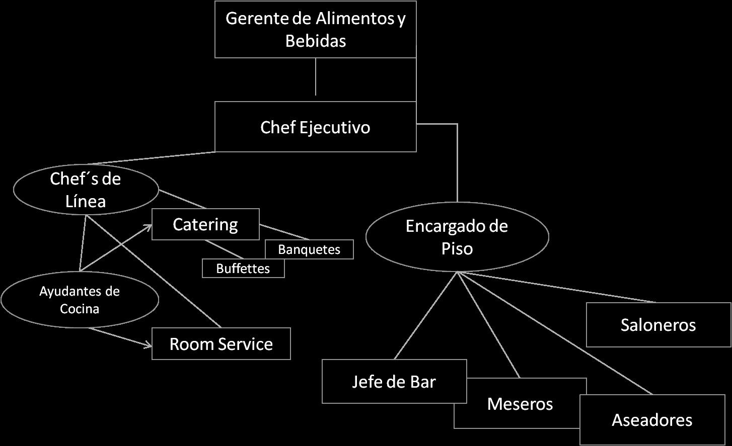 El papel que juega el negocio hotelero en el turismo como Areas de la cocina y sus funciones