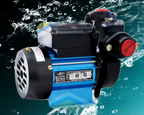 Atul Self Priming Monoblock Pump Silver (1HP) Water Pump Online, India - Pumpkart.com